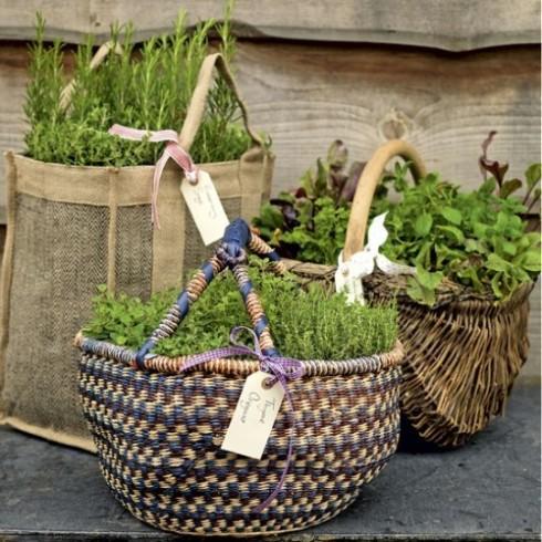 herb-garden-inspirations-500x500