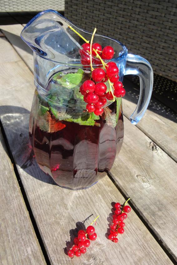 Cranberry-Johannisbeere_Minze_Limonade