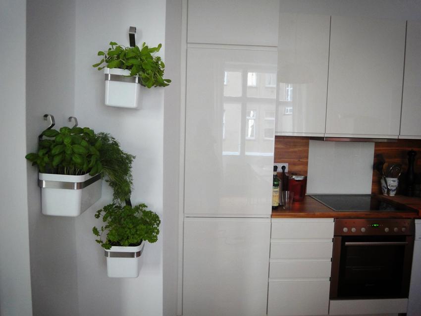 Kräutergarten In Der Wohnung : ikea reloaded kr utergarten an der wand kreatives aus ~ Watch28wear.com Haus und Dekorationen